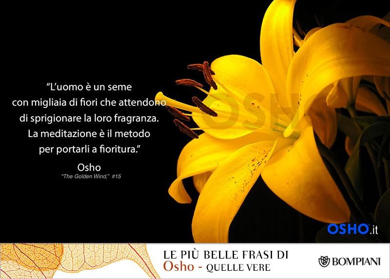 BlogTour Osho - Intervista a Videha