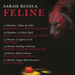 Feline di Sarah Bianca – blogtour