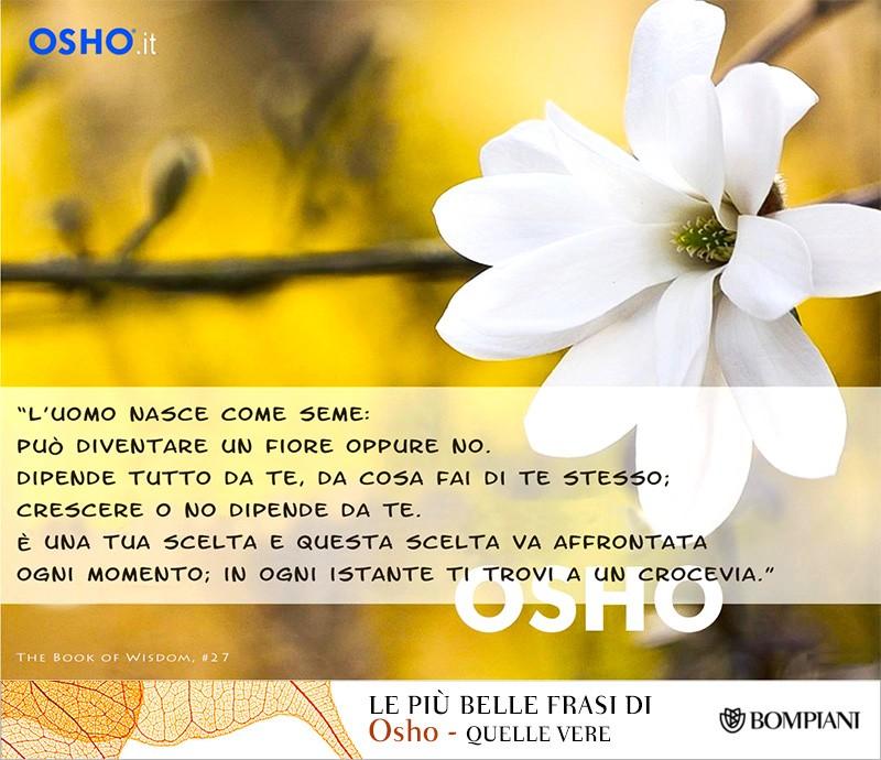 BlogTour Osho 2016