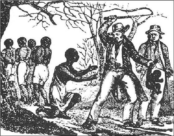 Il profumo del sud di Linda Bertasi: approfondimento storico